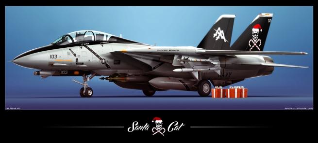 F-14D_SantaCat