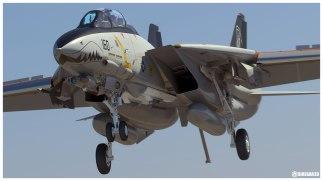 F-14D_Land